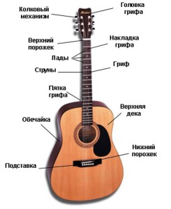 ustroystvo-gitary