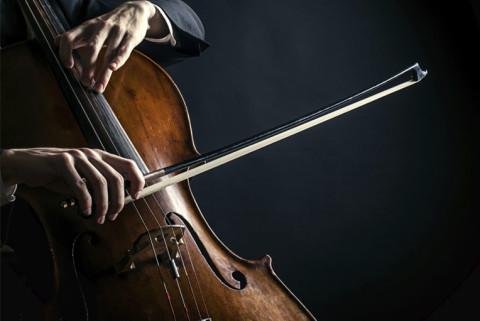 Как выбрать виолончель