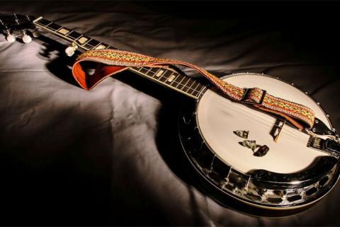 Как выбрать банджо