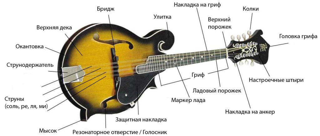Anatomy-of-a-F-Style-Mandolin