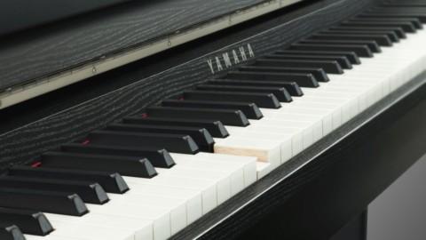 Что такое фортепиано – большой обзор