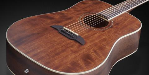 Дредноут гитара