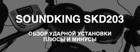 Soundking SKD203 – плюсы и минусы электронной ударной установки